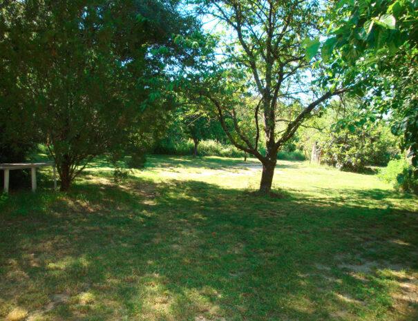 lauriers-jardin